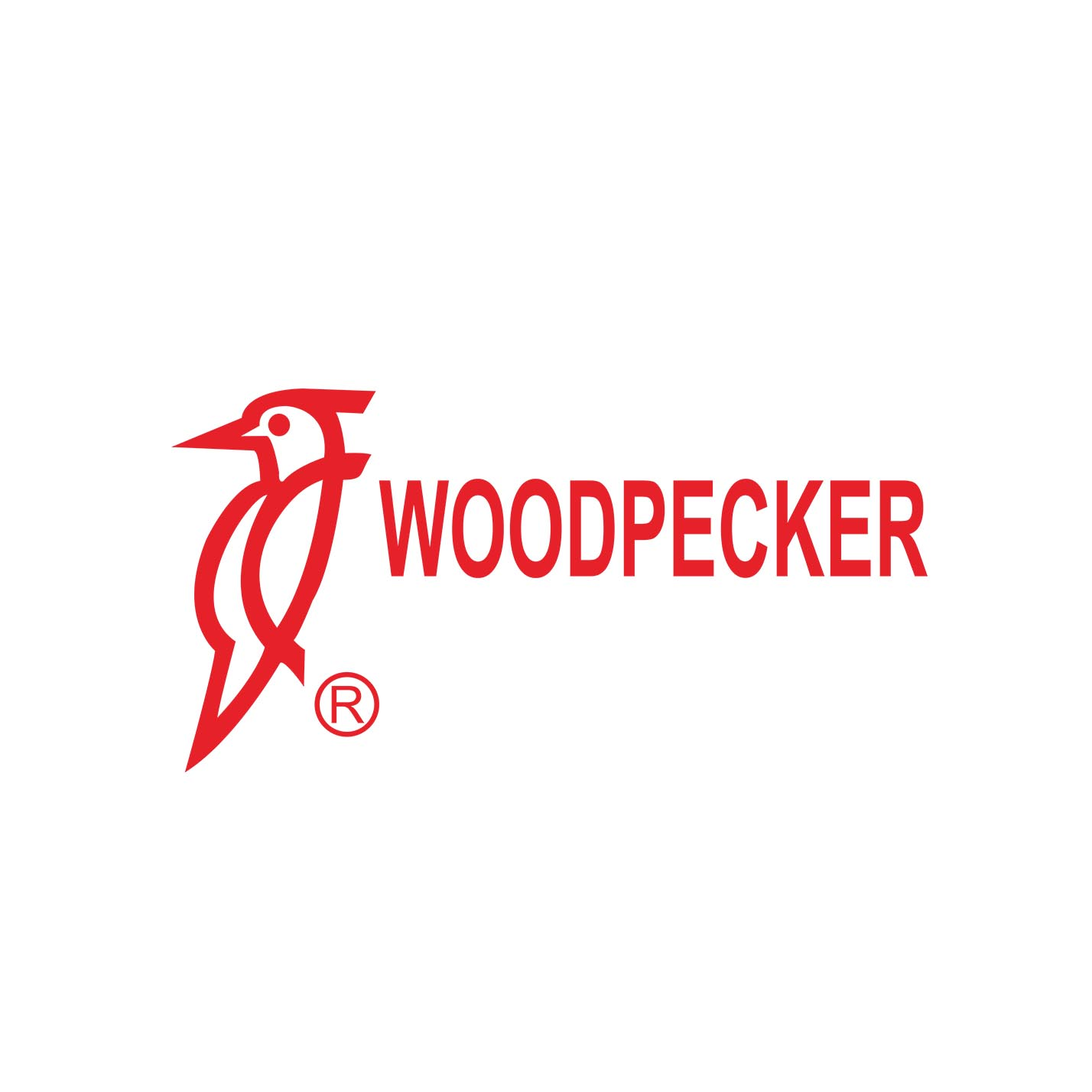 Woodpecker Endo Summit 2021