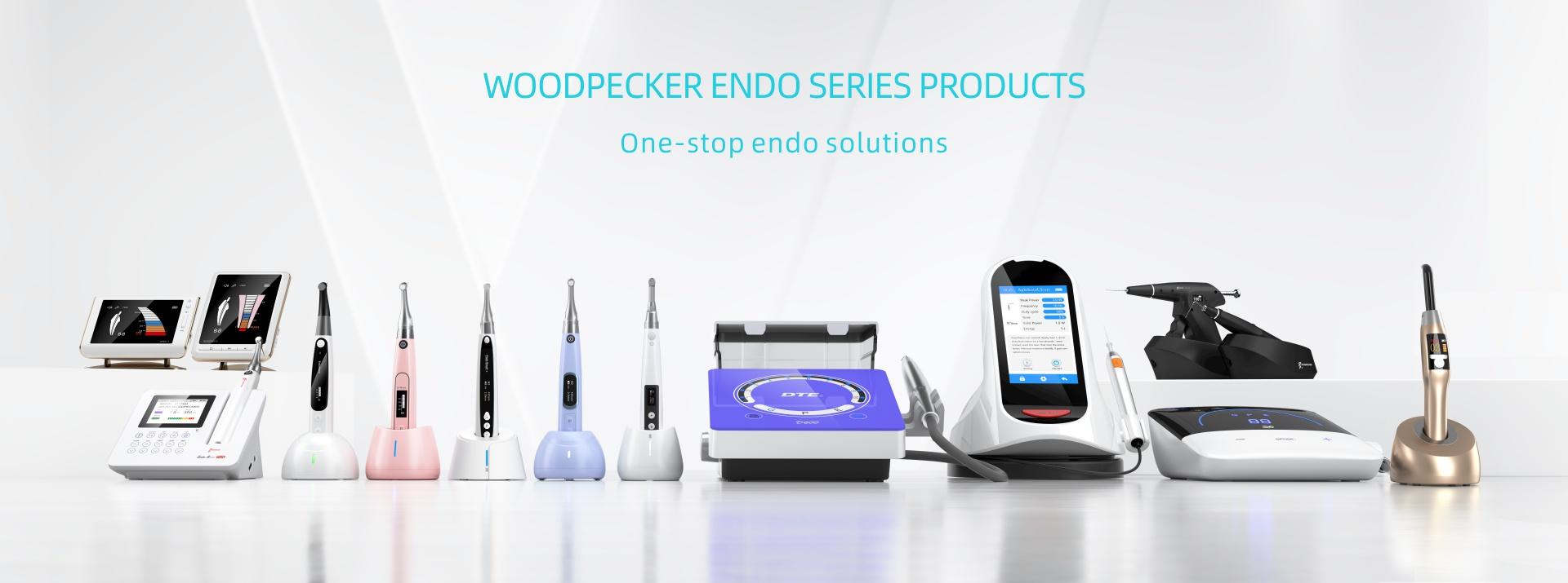 Woodpecker Endo Summit 2021